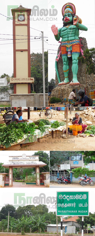 mauthana-madam-gallery