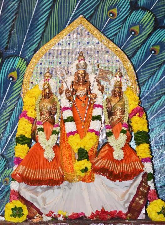 வண்ணை ஸ்ரீவீரமாகாளி அம்மன் கோவில் 13ம் நாள் திருவிழா (3)
