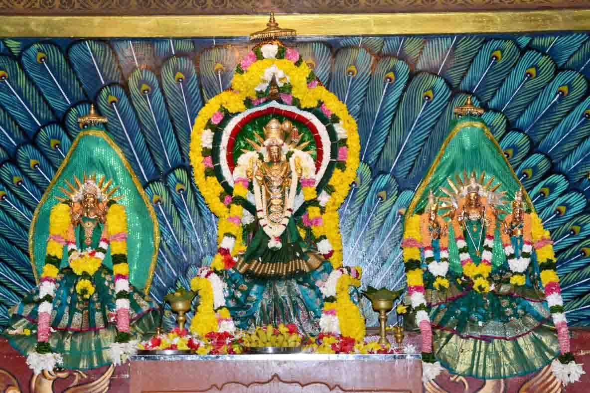 வண்ணை ஸ்ரீ வீரமாகாளி அம்மன் கோவில் 19ம் நாள் திருவிழா (1)