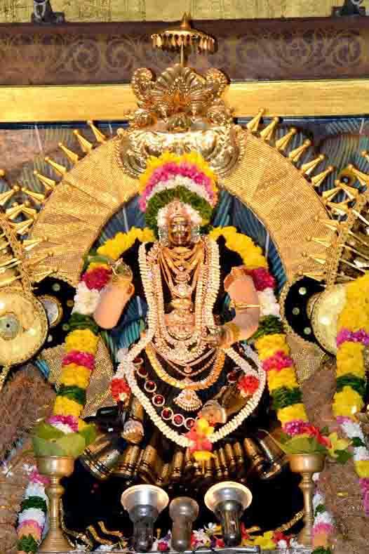 ஸ்ரீ வீரமாகாளி அம்மன் கோவில் புஷ்பரத திருவிழா (4)