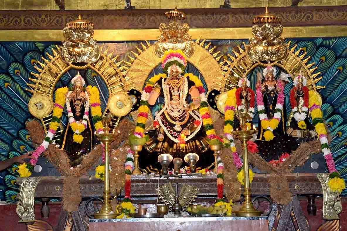 ஸ்ரீ வீரமாகாளி அம்மன் கோவில் புஷ்பரத திருவிழா (8)