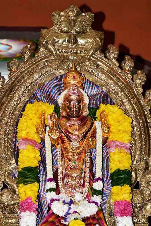 ஸ்ரீ வீரமாகாளி அம்மன் கோவில் 8ம் நாள் திருவிழா (2)