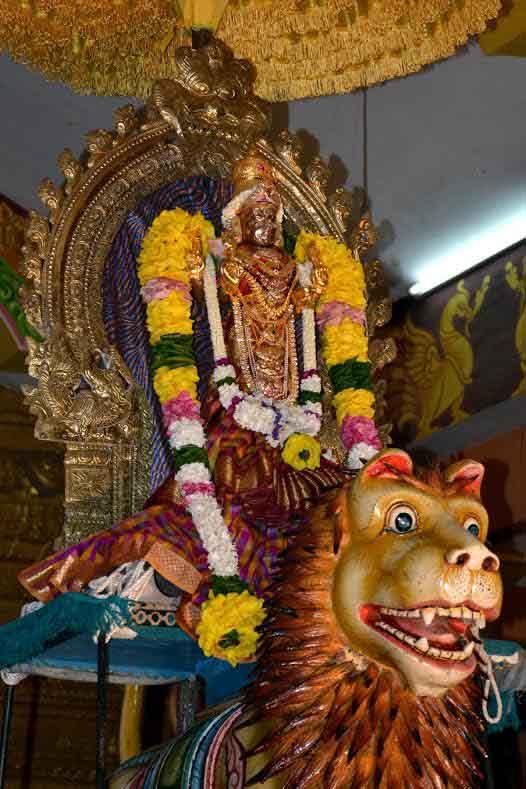 ஸ்ரீ வீரமாகாளி அம்மன் கோவில் 8ம் நாள் திருவிழா (3)