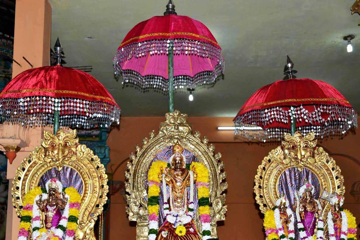 ஸ்ரீ வீரமாகாளி அம்மன் கோவில் 8ம் நாள் திருவிழா (4)