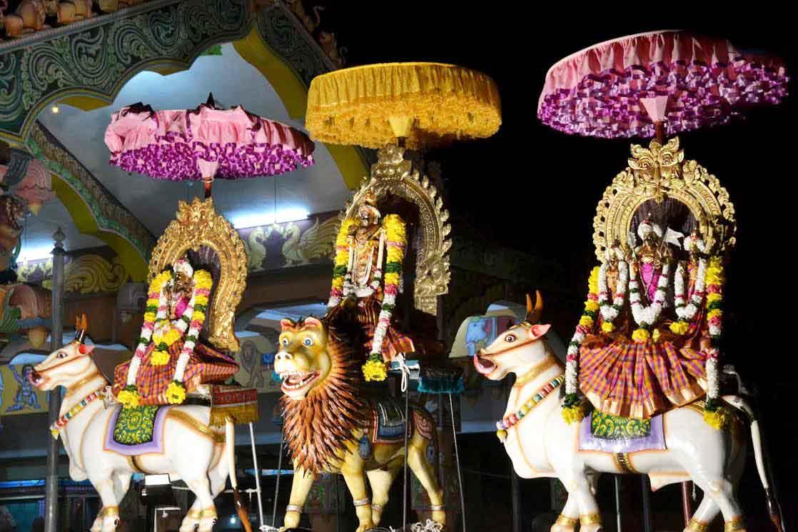 ஸ்ரீ வீரமாகாளி அம்மன் கோவில் 8ம் நாள் திருவிழா (5)