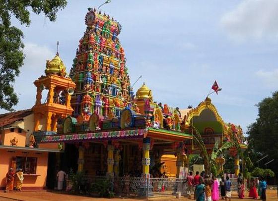 கற்பக விநாயகர் ஆலய இரதோற்சவப் பெருவிழா (1)