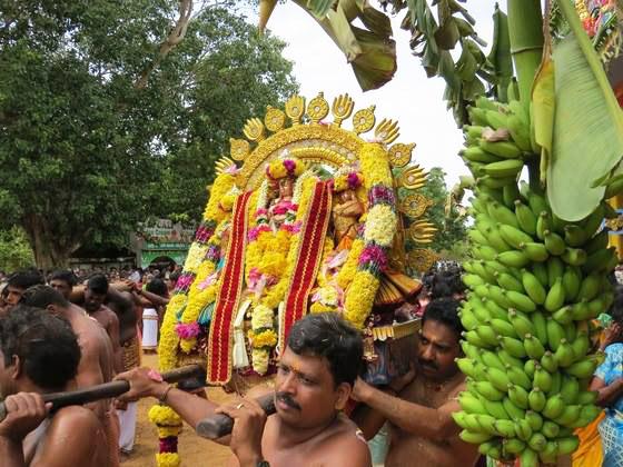 கற்பக விநாயகர் ஆலய இரதோற்சவப் பெருவிழா (11)