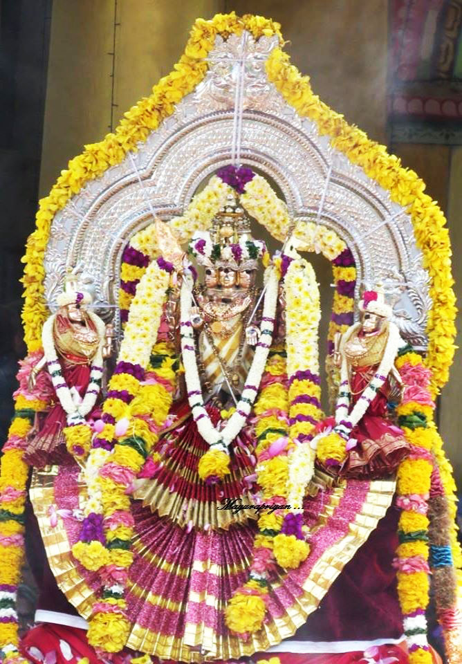 மாவிட்டபுரம் கந்தசுவாமி கோவில் வருடாந்திர மகோற்சவ தேர்த்திருவிழா (1)