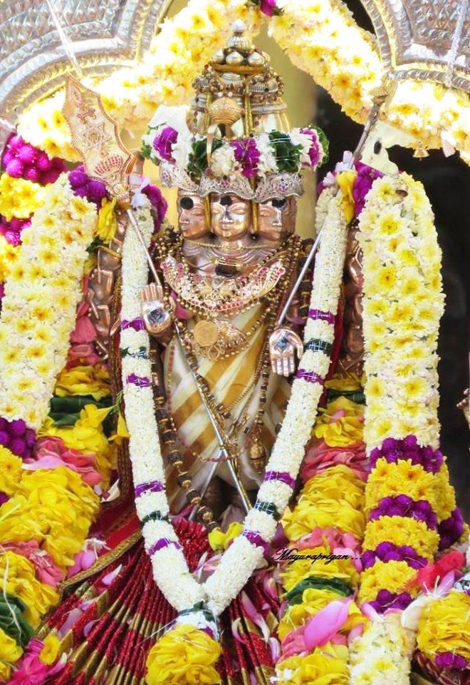 மாவிட்டபுரம் கந்தசுவாமி கோவில் வருடாந்திர மகோற்சவ தேர்த்திருவிழா (3)